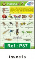 poster_54a_insects[1]